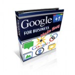 Google+ ffor Business Made Easy