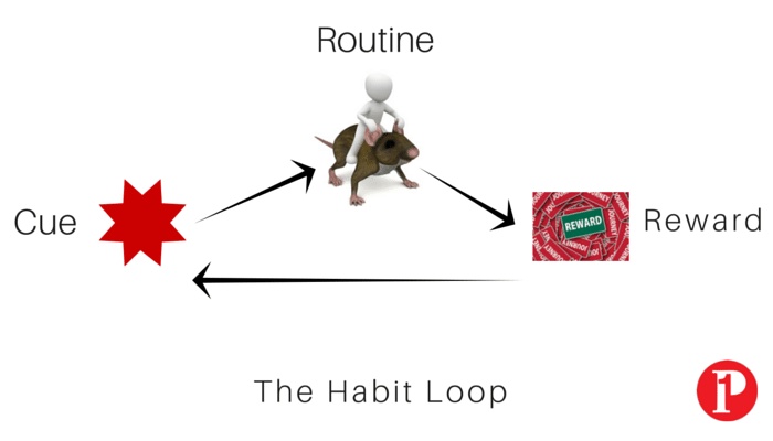 The Habit Loop_Prepare1 Image