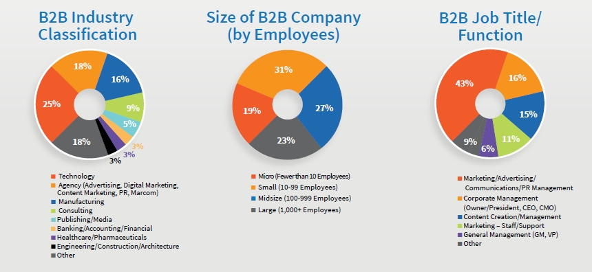 B2B Content Methodology & Demographics